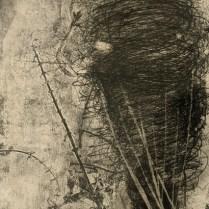 "Christi Birchfield original etching, unframed. 13""w x 15.75""h. 175.-"