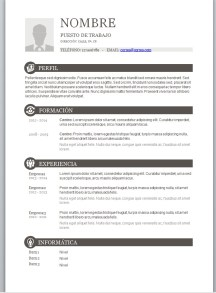 plantilla curriculum basico
