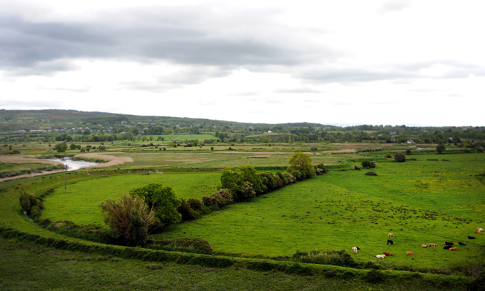 View from the Bunratty Castle