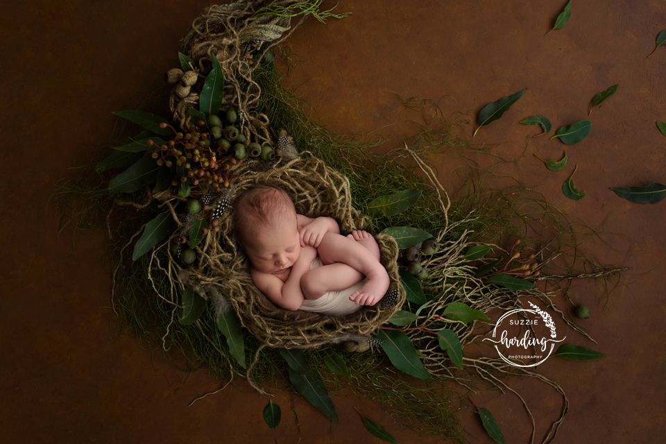 fraser valley birth photographer