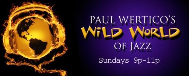 Online News Wertico Radio Show Banner