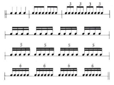 Complete Percussionist 1