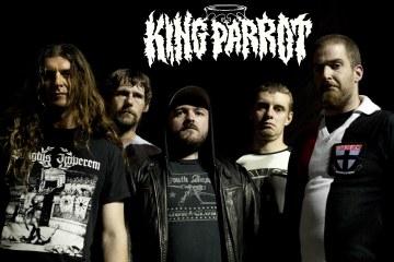 kingparrot