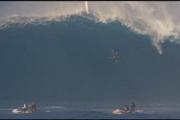 surferfeature