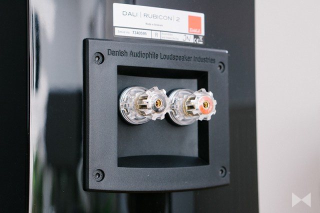 Dali Rubicon 2 Single-Wiring-Terminal