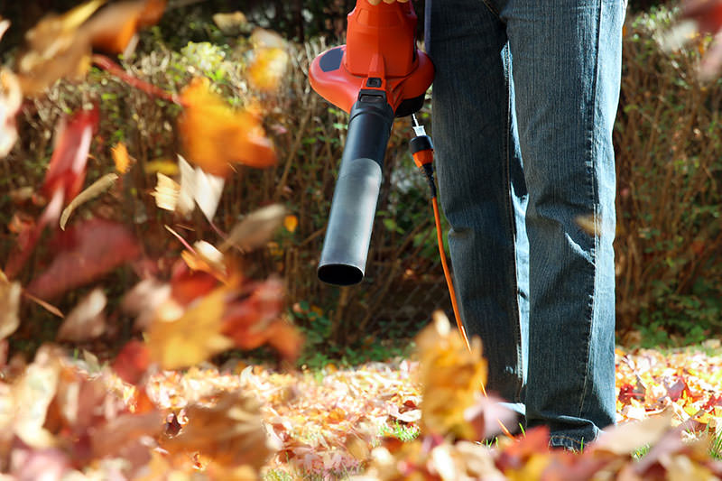 using leaf blower for fall leaves