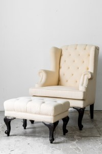Clean Upholstered Furniture | Modernistic