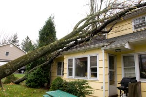 Storm Damage to Your Home   Modernistic