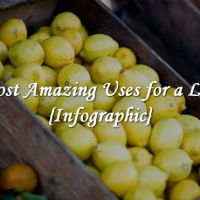 31 Most Amazing Uses for a Lemon