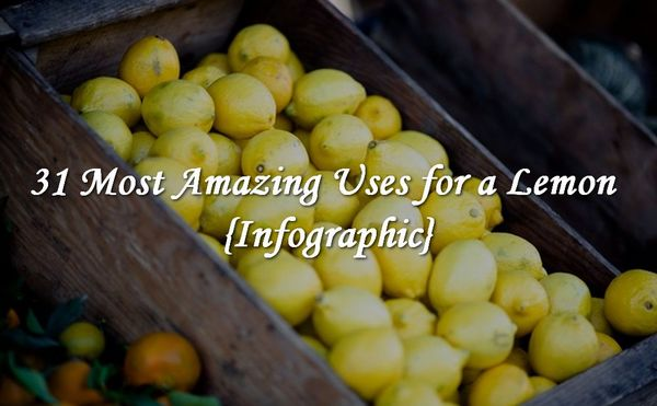 31 Most Amazing Uses for a Lemon {Infographic}