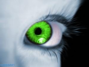 overcoming jealousy green eyed monster