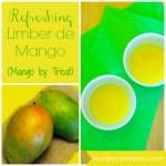 Limber de Mango (Mango Icy Treat) {Recipe}