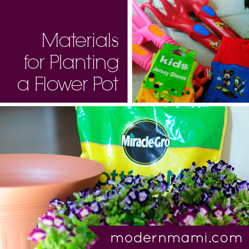 How to Plant a Flower Pot With Kids, Materials Needed