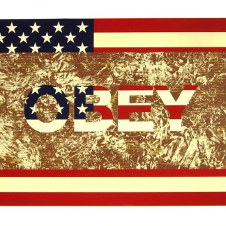 Artist: Richard Duardo Title: Flag Series: Obey (A/P)