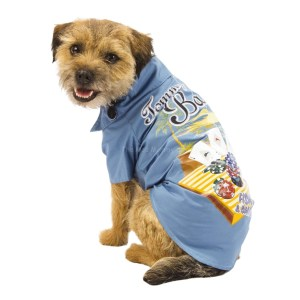 This classic camp shirt featuring playing cards and a beach scene is pet-ready with velcro straps so it's easy to get on and off. (Photo: PetsMart)