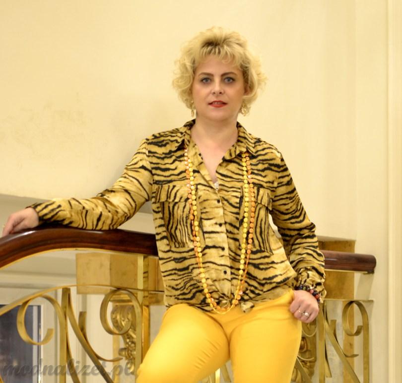 Spodnie żółte i koszula tygrysia