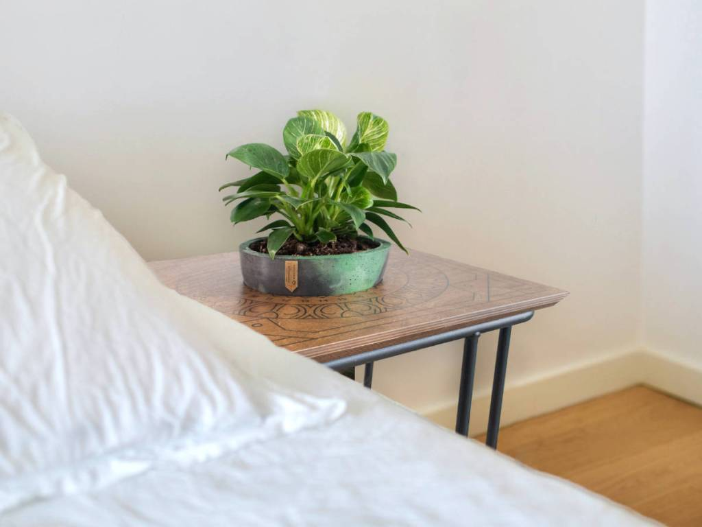Botanical stolić u coffee table visini pored kreveta kako noćni ormarić