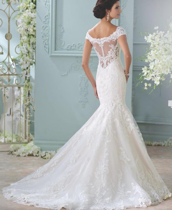 2016 david tutera for mon cheri wedding dresses crazyforus 2016 david tutera for mon cheri wedding dresses junglespirit Choice Image