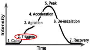 """Graph showing that over time, the intensity of the phases.  4. """"Triggers"""" shows slight increase in intensity.."""