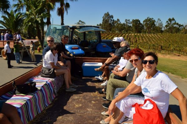 Wine tour with friends