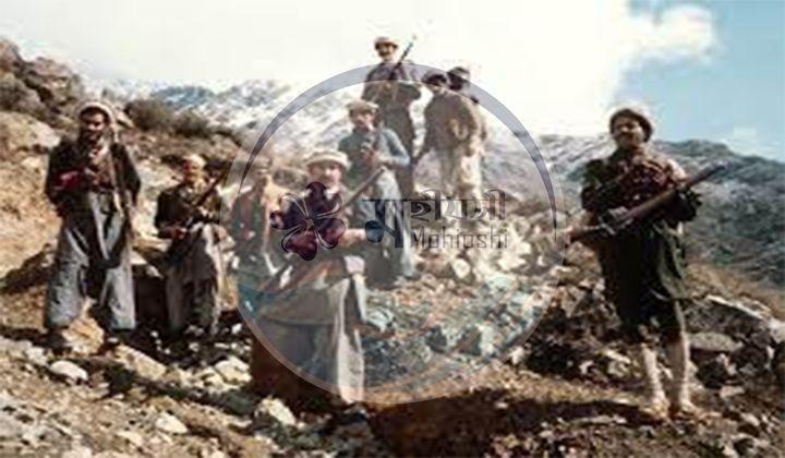 আফগানিস্তানে সোভিয়েত ভূমিকা