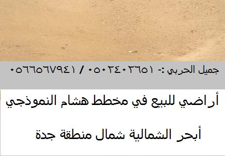 أراضي للبيع في مخطط هشام النموذجي