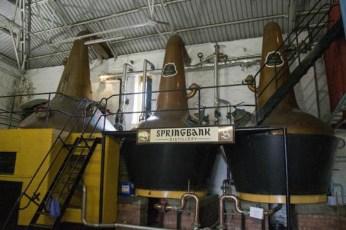 springbank-distillery