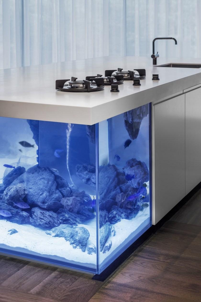 akvarij-u-kuhinji-3