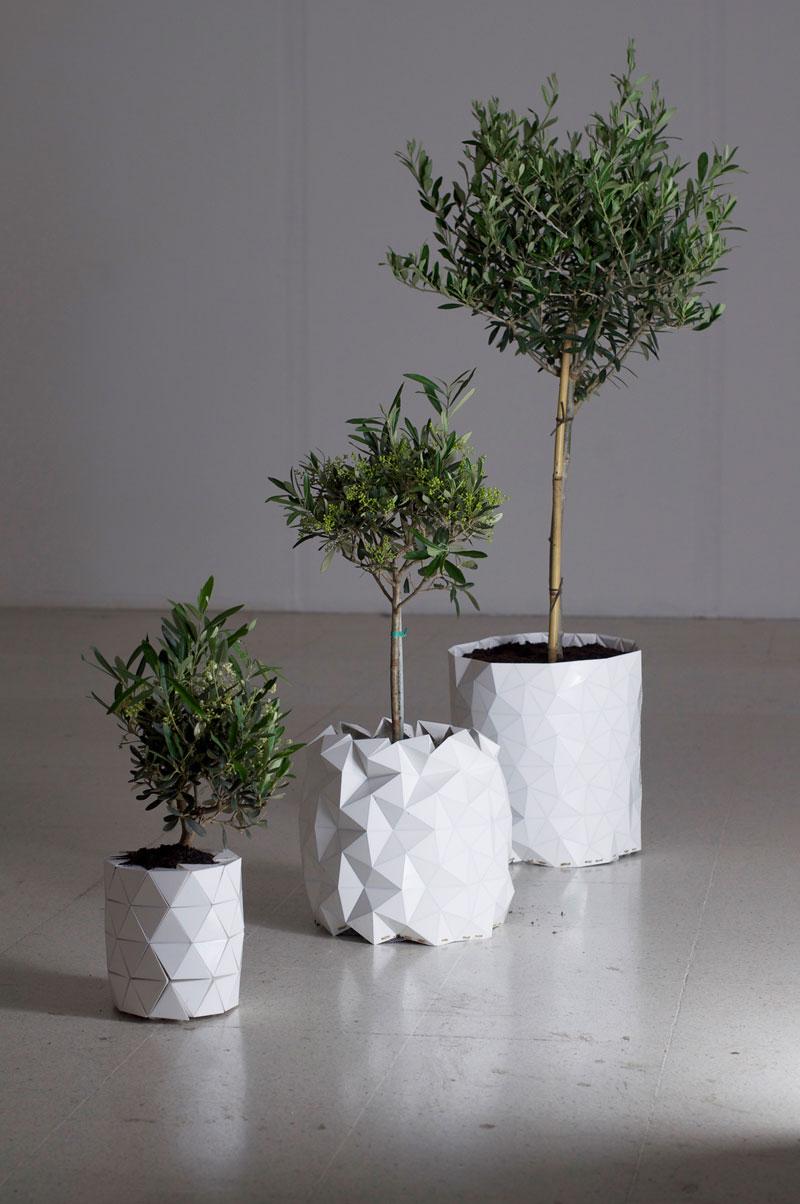 tegla-koja-raste-zajedno-sa-biljkom-4