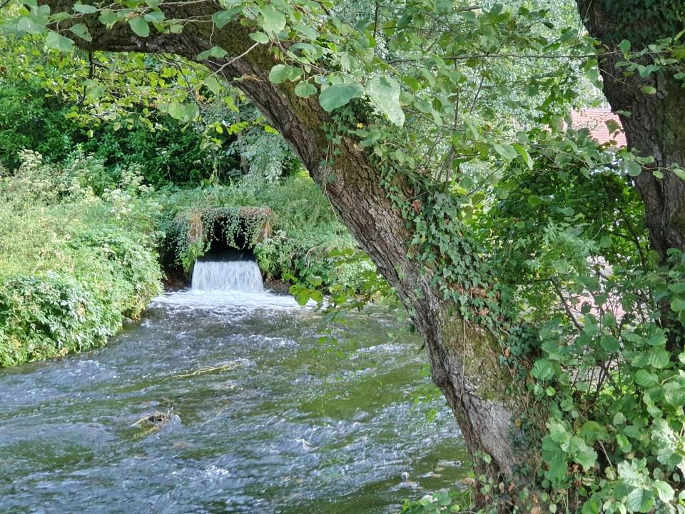 Reka Vrelo