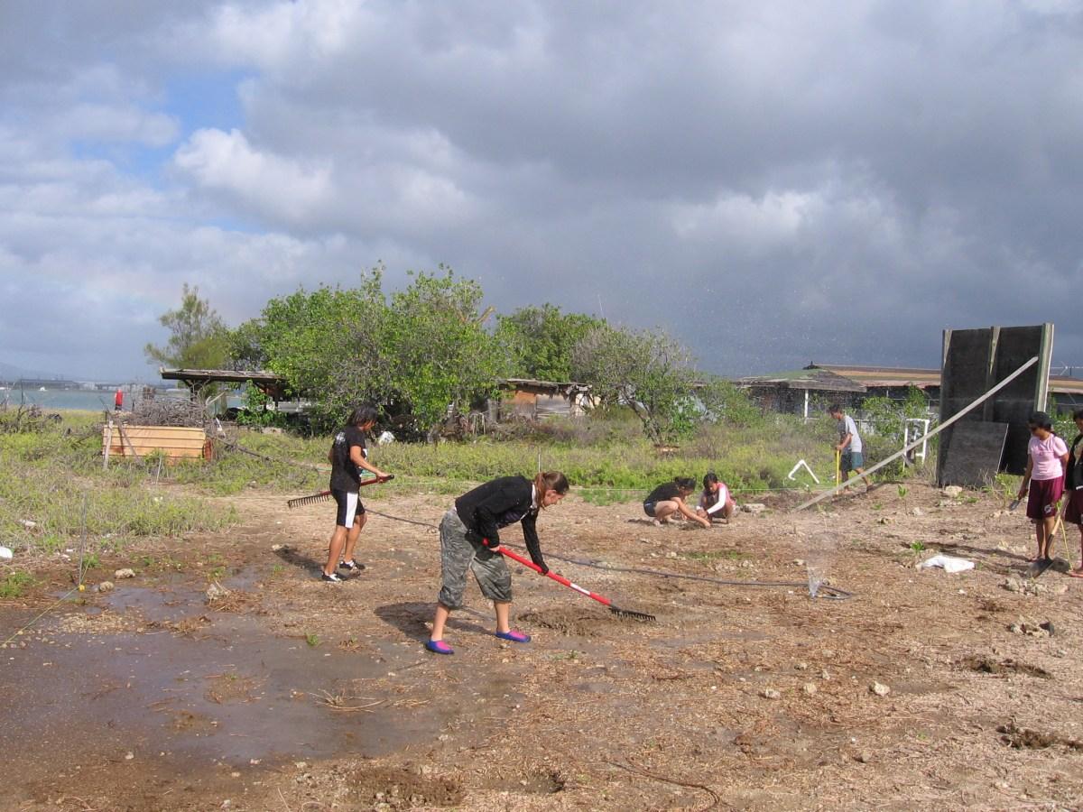 Students helping on Mokauea Island