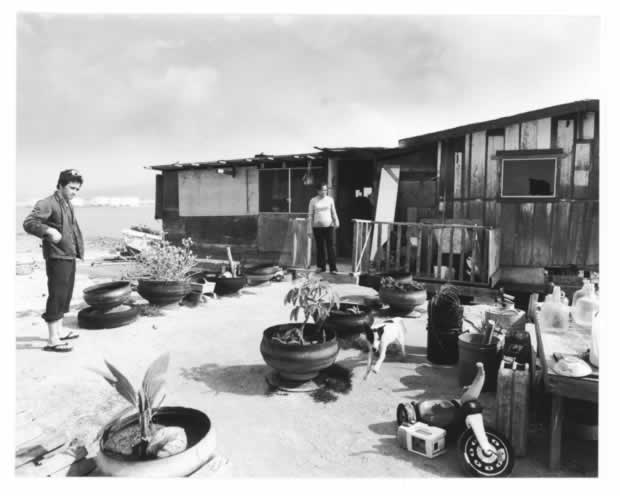 Homes on Mokauea island
