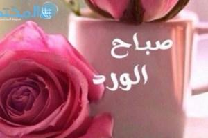 عبارات عن الورد بالانجليزي تويتر Aiqtabas Blog