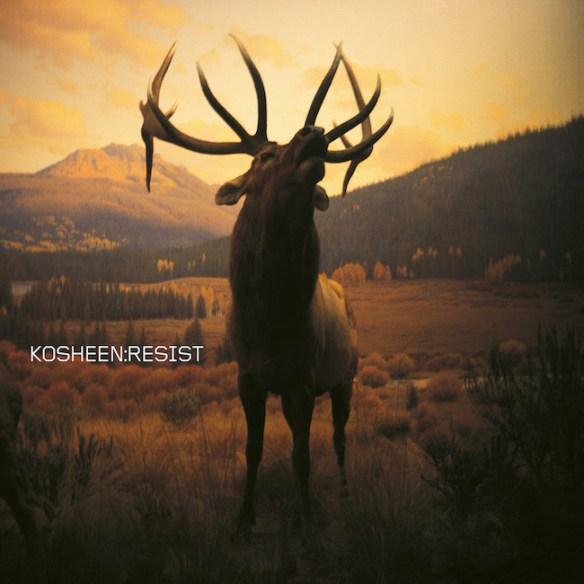 Resist ( 2021 remaster) album Sleeve