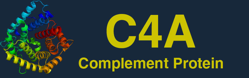 Complement Protein C4A