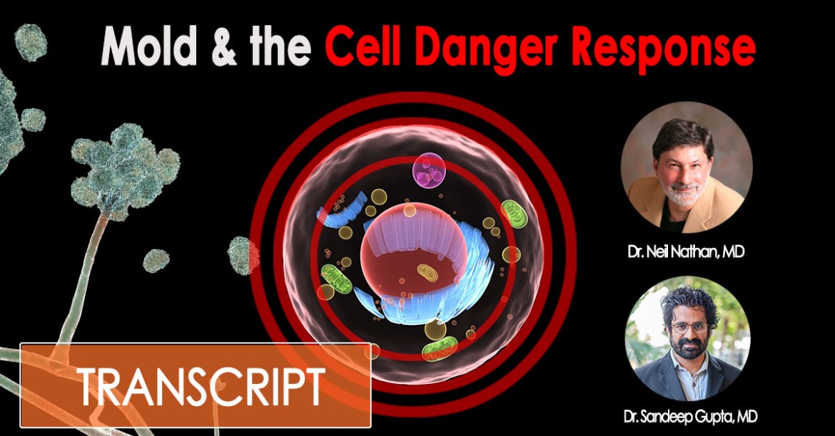 Mold Illness Made Simple - Mold and the Cell Danger Response with Dr. Neil Nathan
