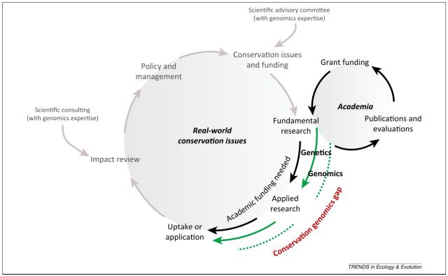 The Conservation Genomics Gap: Figure 1 from Shafer et al. (2015)