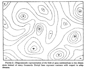 Figure 2 from Wright (1932) [PDF]
