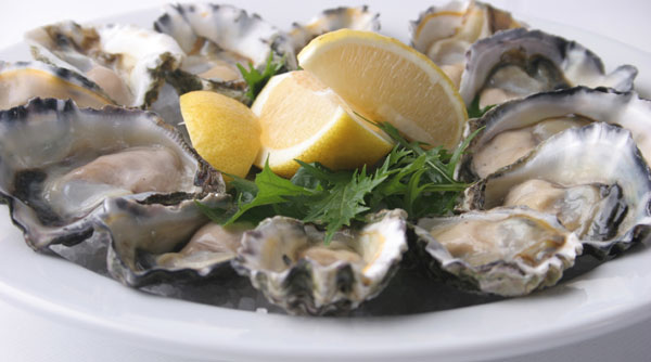 Sydney rock oysters on the half shell. Photo from Time Out Sydney www.au.timeout.com