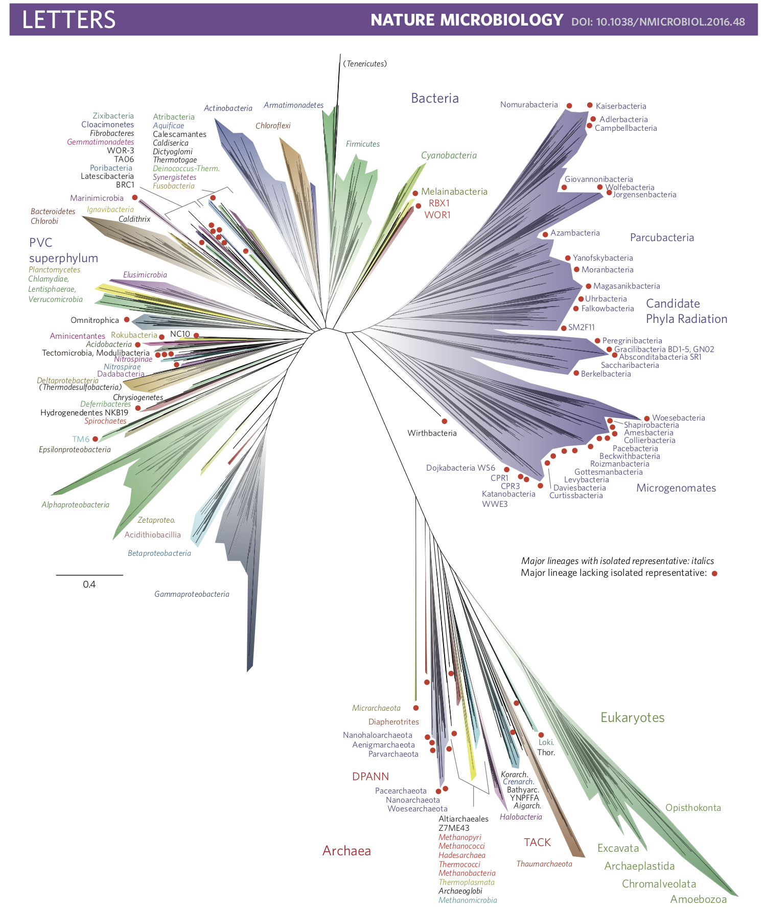 Major New Microbial Groups Expand Diversity And Alter Our