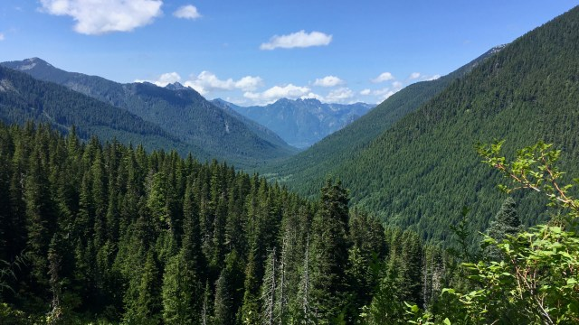 A view up a forested mountain valley to clear skies dotted with clouds