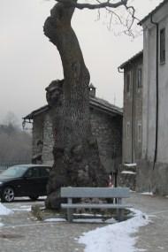 Frassino Maggiore a Moncenisio (TO) 1496 mslm abitanti 50 tra i comuni più piccoli d'italia