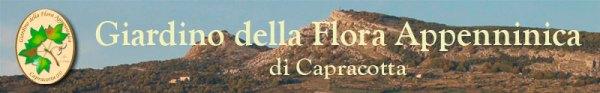 Il Giardino dell Flora Appenninica a Capracotta