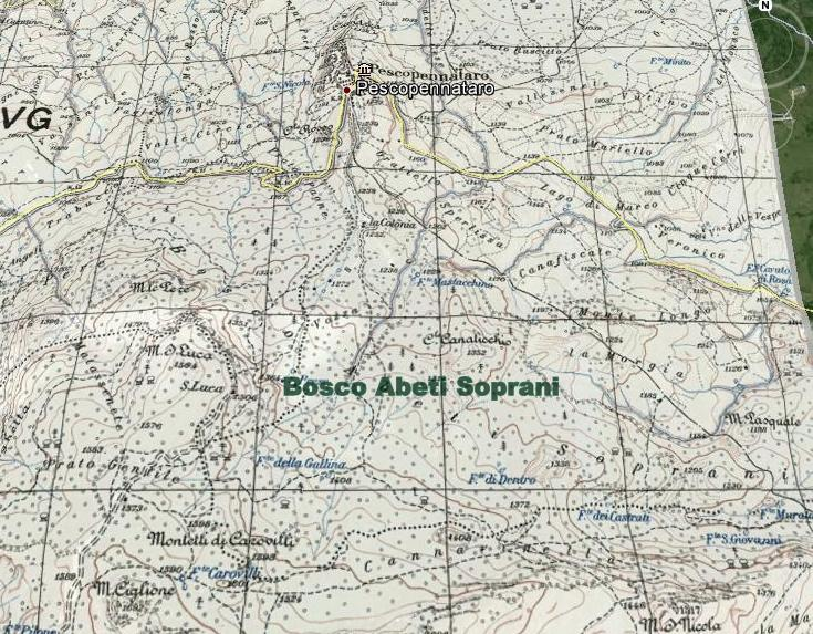Cartografia Bosco Abeti Soprani