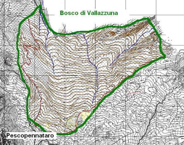 Bosco di Vallazuna Pescopennataro