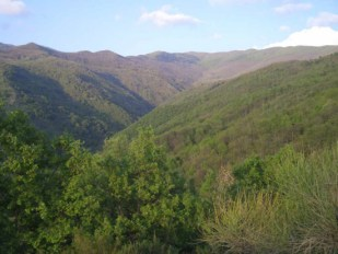 Valle del Fiumicello