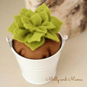 Make a Potted Succulent with the Coco Flower Crown Pattern