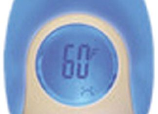 Gro-egg room thermometer