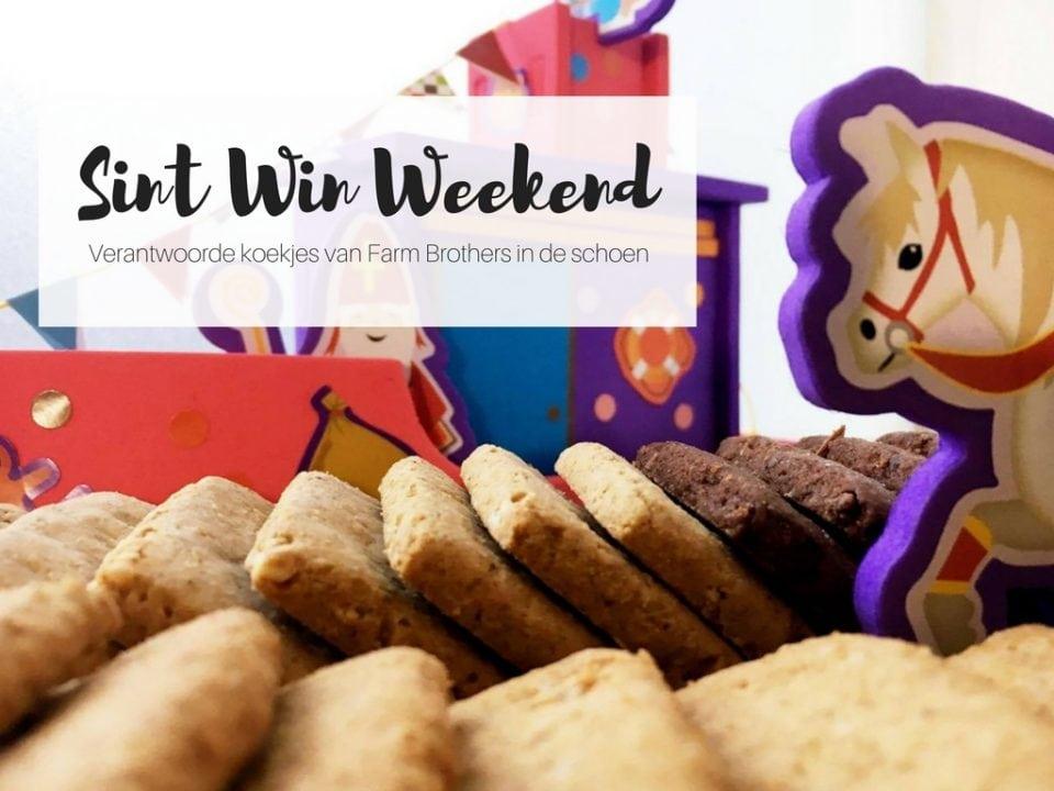 sint win weekend verantwoorde koekjes