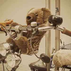 Dillema | Een auto, een fiets of misschien wel een bakfiets?